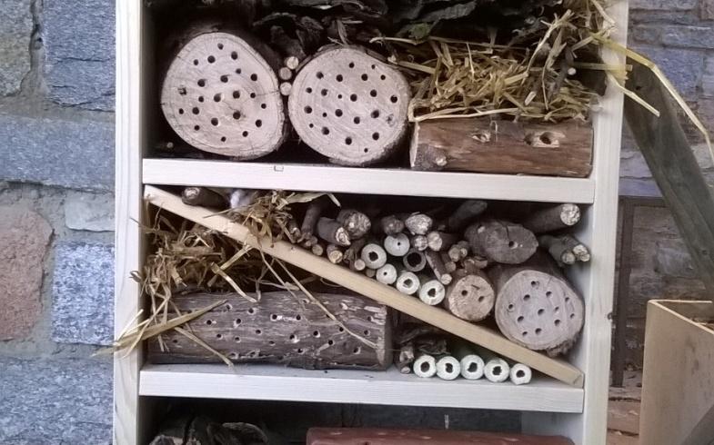 Un albergo per le api selvatiche